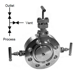 Double Block and Bleed Monoflange with OSandY Primary Isolation Valve