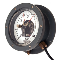 Pressure Gauges for Special Applications